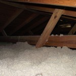 Photo of cellulose insulation in attic