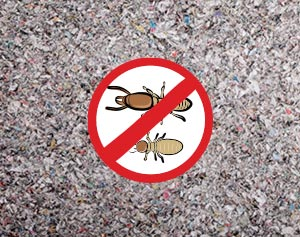 Cellulose Insulation Does Not Attract Termites or other Insects